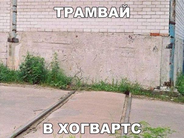 Фото №456261626 со страницы Марины Явтушенко