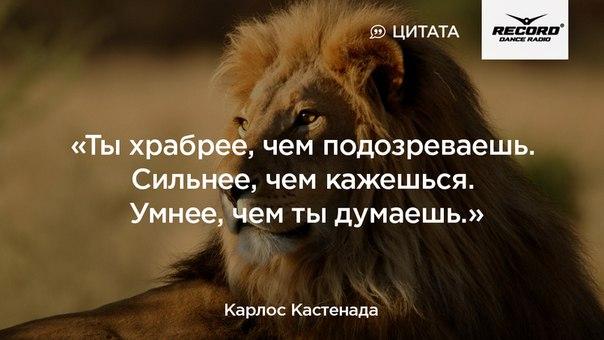 Фото №456254144 со страницы Алены Филипенко
