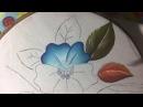 Pintura en tela Tucán 2 con cony