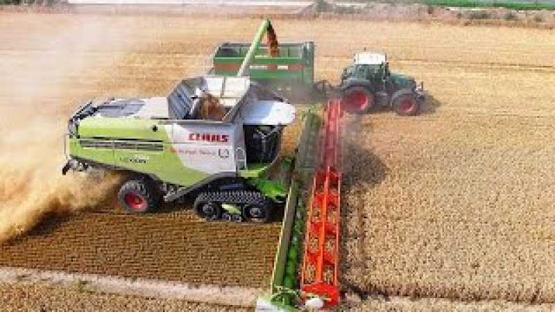 Mähdrescher CLAAS LEXION 780 Terra Trac Fendt Weizenernte biggest combine harvester wheat harvest