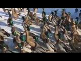 Дикі качки знайшли найтепліше місце в Закарпатті - Голос Карпат