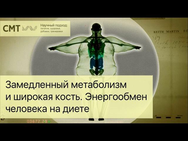 Замедленный метаболизм и широкая кость. Почему не удается сжечь жир? pfvtlktyysq vtnf,jkbpv b ibhjrfz rjcnm. gjxtve yt elftncz c