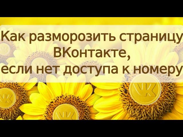 🌻 Как разморозить страницу ВКонтакте через виртуальный номер 🌻