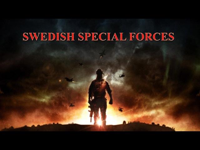 Шведский спецназ - Викинги
