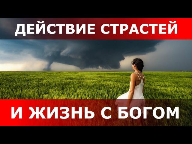 Действие страстей и жизнь с Богом.Священник Игорь Сильченков