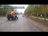 Северные олени. Будьте внимательны и взаимовежливы на дорогах.