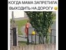 Когда мама запретила выходить на дорогу