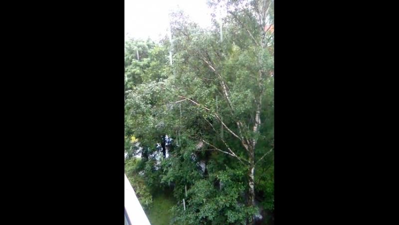 в Питере дождь.4 часа не переставая (24.07.17)
