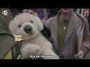 170529 TWICE TV5 - TWICE in SWITZERLAND EP.04 русс.саб