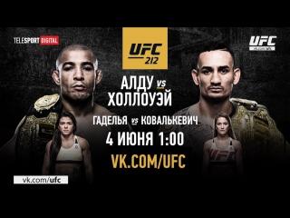UFC 212 Обзор всех боев
