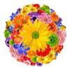 Удобная и недорогая доставка цветов