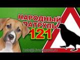 Народный Патруль 121 ЖИВОТНЫЕ НА ДОРОГЕ