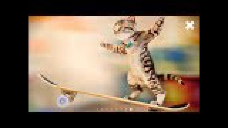 СИМУЛЯТОР Маленького КОТЕНКА 14 Игровой мультик мультяшная игра для детей КОТЯТА