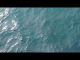 n_i_k_u_l_i_n_a_22 video