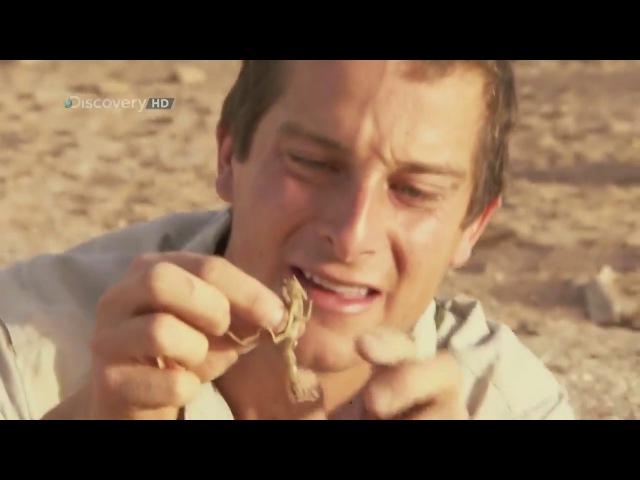 Bear Grylls. Выжить любой ценой. 2 Сезон. 1 Серия. Пустыня Сахара. (1 Часть)