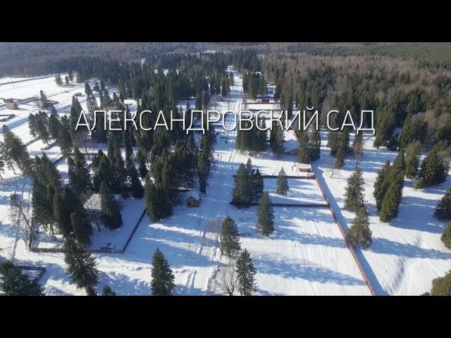 2016 03 АлександровскийСад