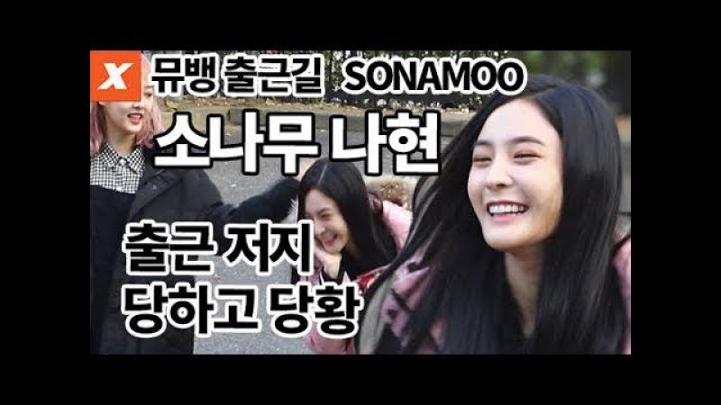소나무 뮤직뱅크 출근길…나현, 단체 인사 까먹고 당황(SONAMOO,nahyun)