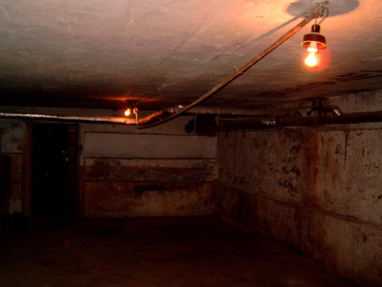 Полицейские рассказали, что убило всю семью в подвале