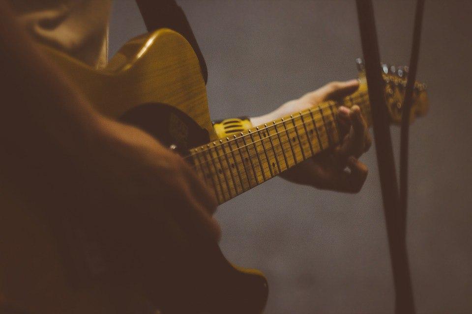 Концерт живой музыки пройдет в Доме книги «Медведково»