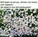 Екатерина Шульгина фото #22