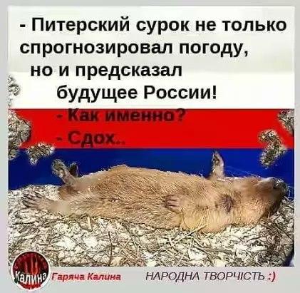Россия повторно отказала в выдаче украинских политзаключенных Сенцова и Кольченко, считая их своими гражданами, - замминистра юстиции - Цензор.НЕТ 3002