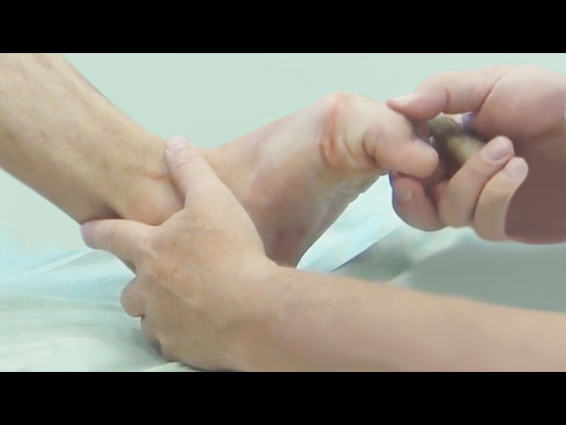 Функциональная анатомия стопы. Мышечные цепи и связь рефлекторных зон стопы с в ...