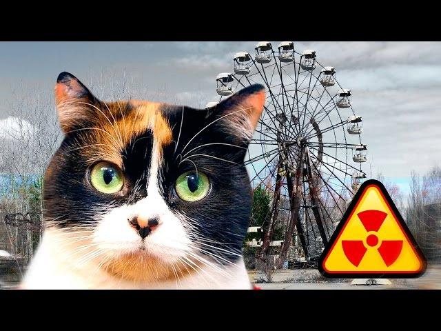 Сливки Шоу в Чернобыле. СКОЛЬКО СТОИТ попасть в ЗОНУ ОТЧУЖДЕНИЯ и ОПАСНО ли это