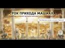 Мария Карпинская открывает тайны Машиаха. Что скрывают раввины