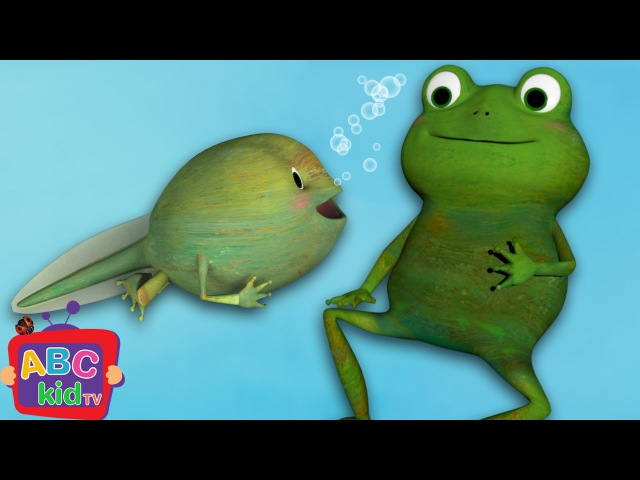 Frog Song | Life Cycle of a Frog - ABCkidTV