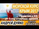 3 Практика от боли в любом органе ⚜ Морской курс Крым 2017 ⚜ Андрей Дуйко коды