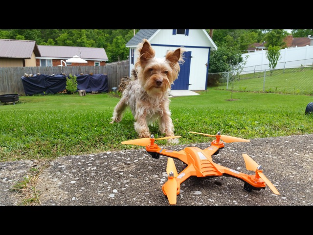 Safety Drone?!? Check out the Tracker Drone Bojiang S5C-2 Review - TheRcSaylors