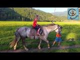 Дети и машина, верхом на лошади, горное озеро. Путешествие на горный Алтай Часть 2...