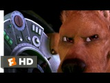 Scooby Doo 2 Monsters Unleashed (1010) Movie CLIP - I'm Scooby-Dooby-Doo (2004) HD
