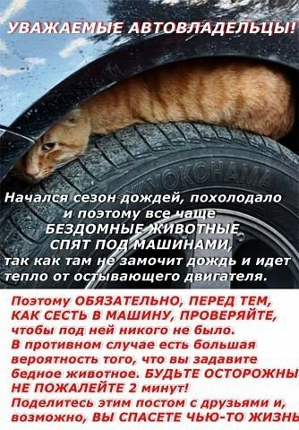Фото №456257291 со страницы Ивана Боровского