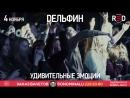 4 ноября | Дельфин | Москва, RED