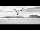 Men I Trust Feat James Odile Extatic Memoirs
