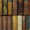 Живая библиотека