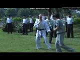 Брюс Ли против Вилли Джея ( Вин чунь VS Дзюдо)НD