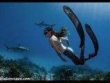 Ashleigh Baird - Freedive against all odds