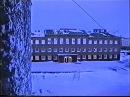 Тикси после пурги 14.01.1997 Татьяна, Алиса, Гостиница, коты