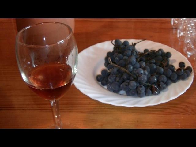 Вино Изабелла (выдержка в дубовой бочке 1 год) или превращение красного в белое