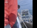 Фелпс погрузился в клетку, чтобы встретиться лицом к лицу с акулой