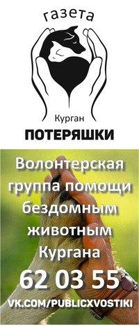 Бисексуальные группы или сообщества в кургане — img 15