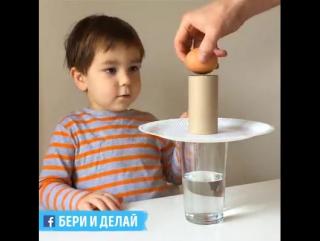 Простые научные эксперименты с яйцами.