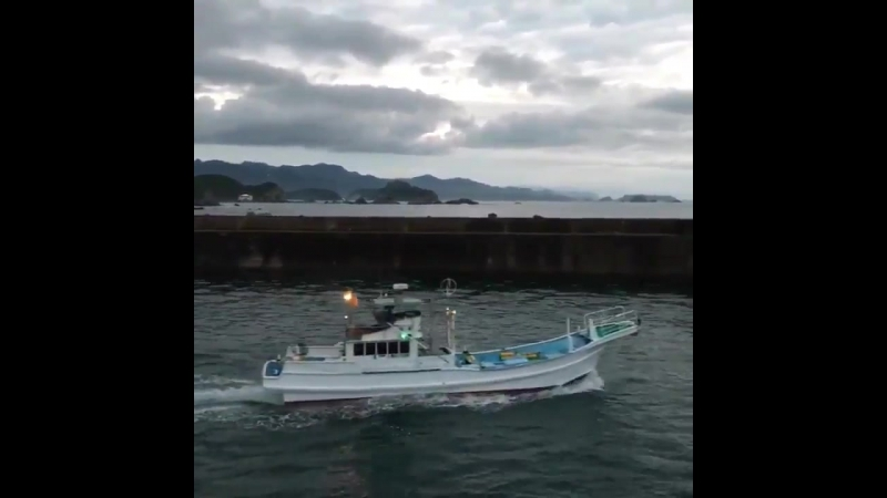 All 12 banger boats head out to patrol the sea, in search of dolphins