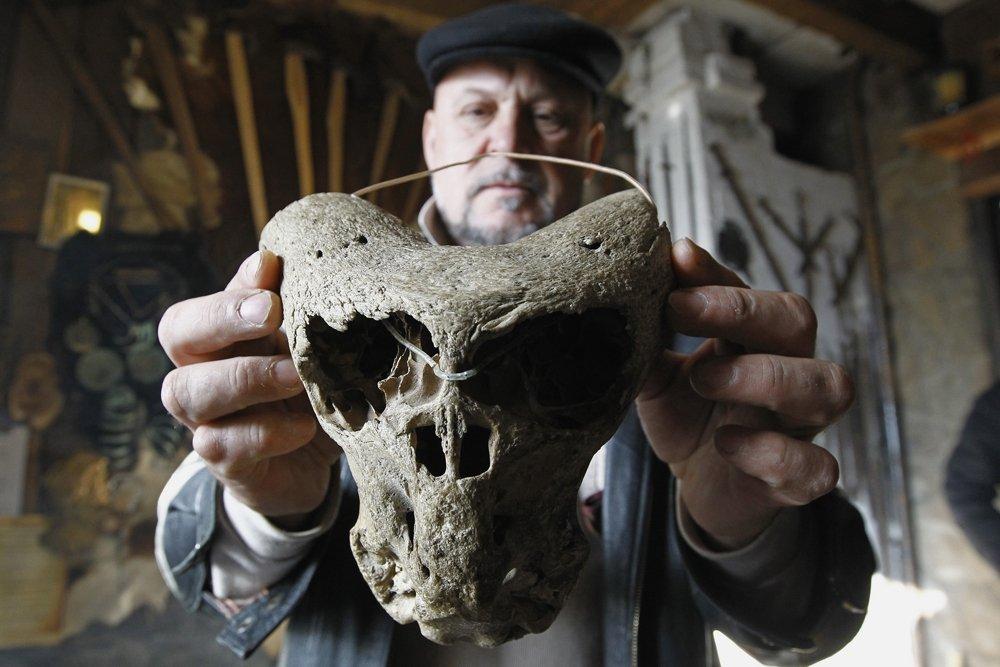 Года два назад Владимиру Меликову спелеологи принесли два необычных черепа с рогами