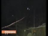 Как правильно снять кошку с дерева)