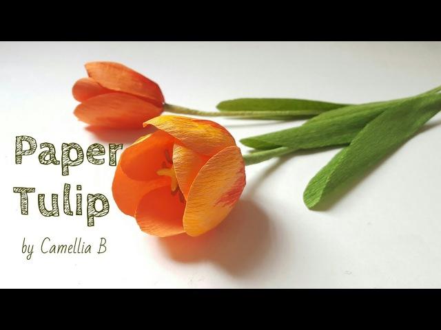 DIY- Paper Tulip flower from crepe paper - Papel tulipán de papel crepé