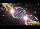 послание как справится с болью трансформаций процесс эволюции новые энергии