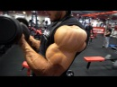 GROW the REAR DELTS/BACK/BICEPS - HIGH Volume